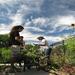 Gardening at OSH