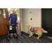 PAWS Service Dog COLONEL opens doors for Client Janey