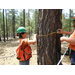 One camper demonstrates how to properly determine the diameter of a tree using a diameter tape.
