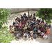 Dominican Republic Mission Trip 2014