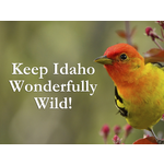 Keep Idaho Wonderfully Wild!