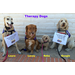 'We are Gabriel's Angels Therapy Dogs and we help kids!'
