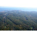 Preserve the 1,000 Acre Forest