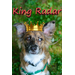 Rad Radar for King of Wagfest