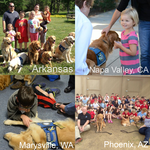Size_150x150_picstitch_comfort_dogs