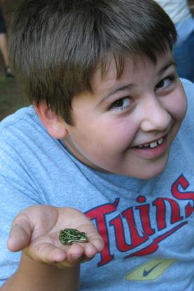 Size 550x415 junior 3 2008 frog