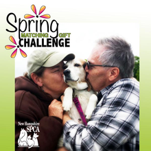 Spring Matching Gift Challenge