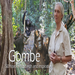 Jane Goodall and the Jane Goodall Institute over the last 50 years - Video