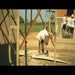 Volunteers in Haiti on Build it Week