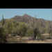 Meet the Sonoran Desert