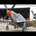 Tuskegee Airmen Red Tail P-51 Mustang History