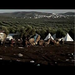Please watch this video and take a tour of the Olive Tree Camp with Sarab Jijakli.