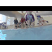 Campus Recreation Aquatics: Swim Lessons