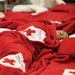 American Red Cross Twin Cities Region