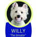 Unique Upholstery, Carpet & Rug Cleaning- Willy & Larry