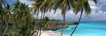 Wade Family Tropical Vacation banner