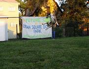 Logan Square Dog Park banner