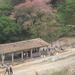EWB-CPC Candelaria Honduras Waste Management Project