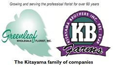 Kitayama Brothers banner