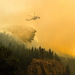 Colorado Wildfire Relief