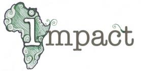 IMPACT 2013 banner