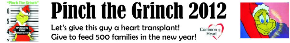 Pinch the Grinch 2012 banner