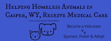 Paws2Help Foundation banner