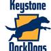 Kentucky DockDogs