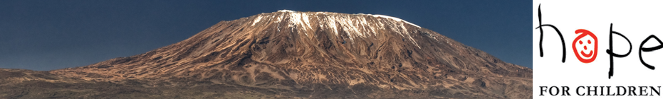 Charleston Climbs Kilimanjaro 2013/14 banner