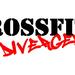CrossFit Divergence Veteran's Day THROWDOWN