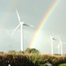 American Wind Energy Association Annual Staff Charity Drive