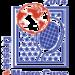 TeamUSA Deaf Tennis for 2014 Dresse & Maere Cups