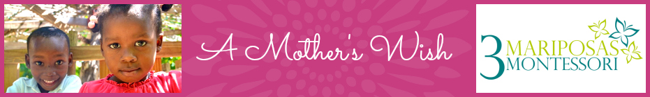 A Mother's Wish 2014 banner