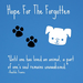 Hope For The Forgotten Rescue