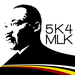 2015 Barefoot Republic 5K 4 MLK Team