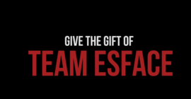 Team Esface banner