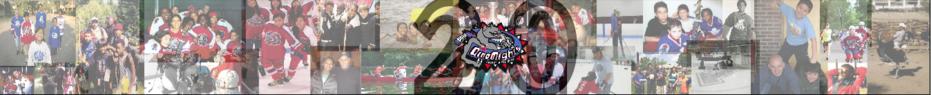 2015 Marathon Relay for DinoMights banner
