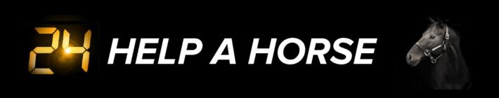 ASPCA Help A Horse Day 2015 banner