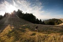 The 1st Annual Crack-o-Dawn Malibu Trail Run banner