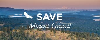 Team Mount Grant banner