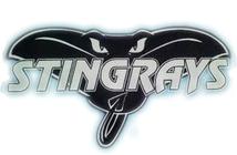 Stingray Aquatic Team Swim-A-thon banner