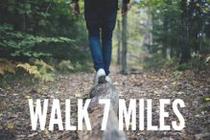 Walk 7 Miles banner