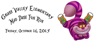 2015 Mad-Dash Fun Run banner