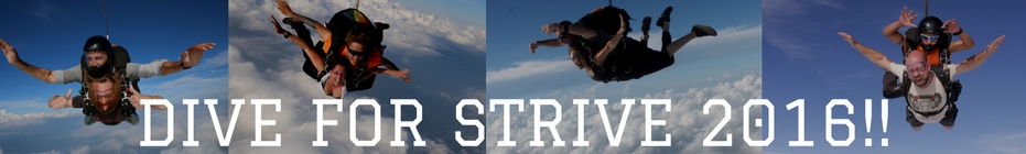 DIVE FOR STRIVE 2016!! banner