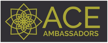 ACE Ambassadors Year End Campaign! banner