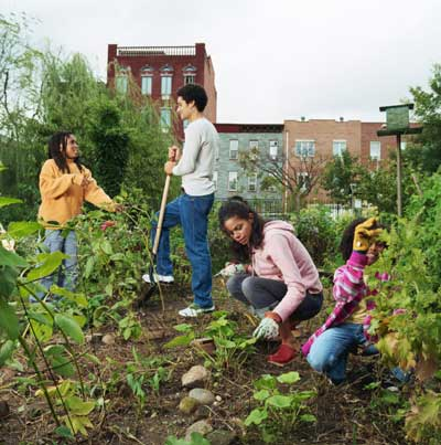 Size 550x415 community garden