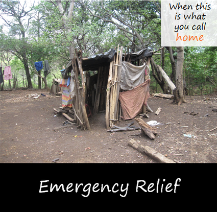 Size 550x415 emergency relief