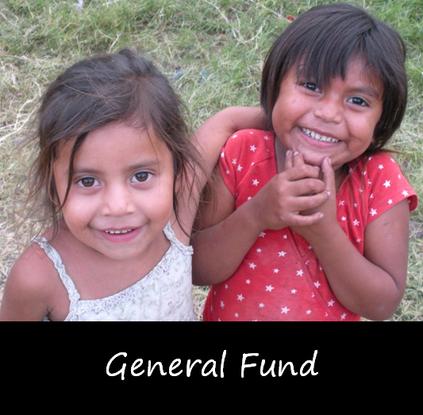 Size 550x415 general fund