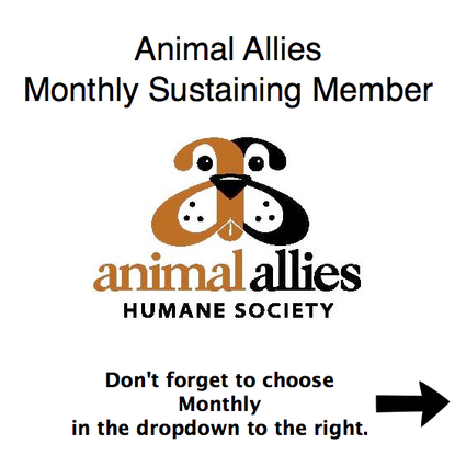 Size 550x415 monthly edited animalallies2 color.jpg conv