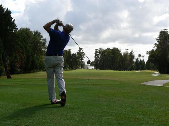 Size 550x415 golf